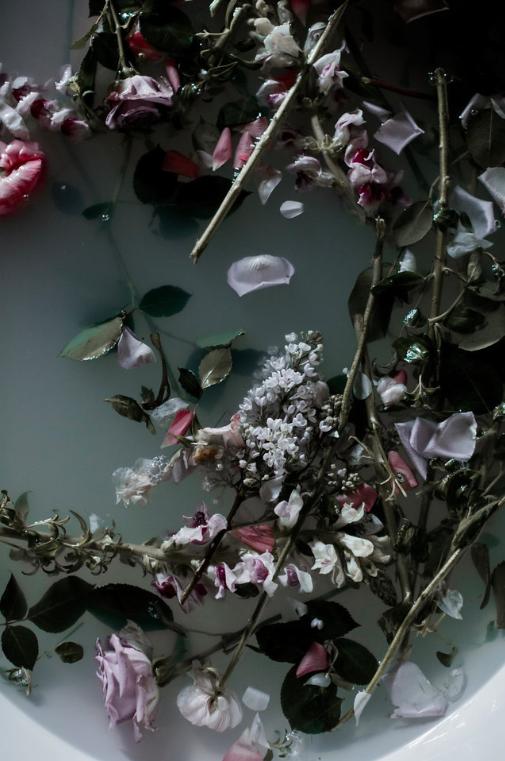 flower matera